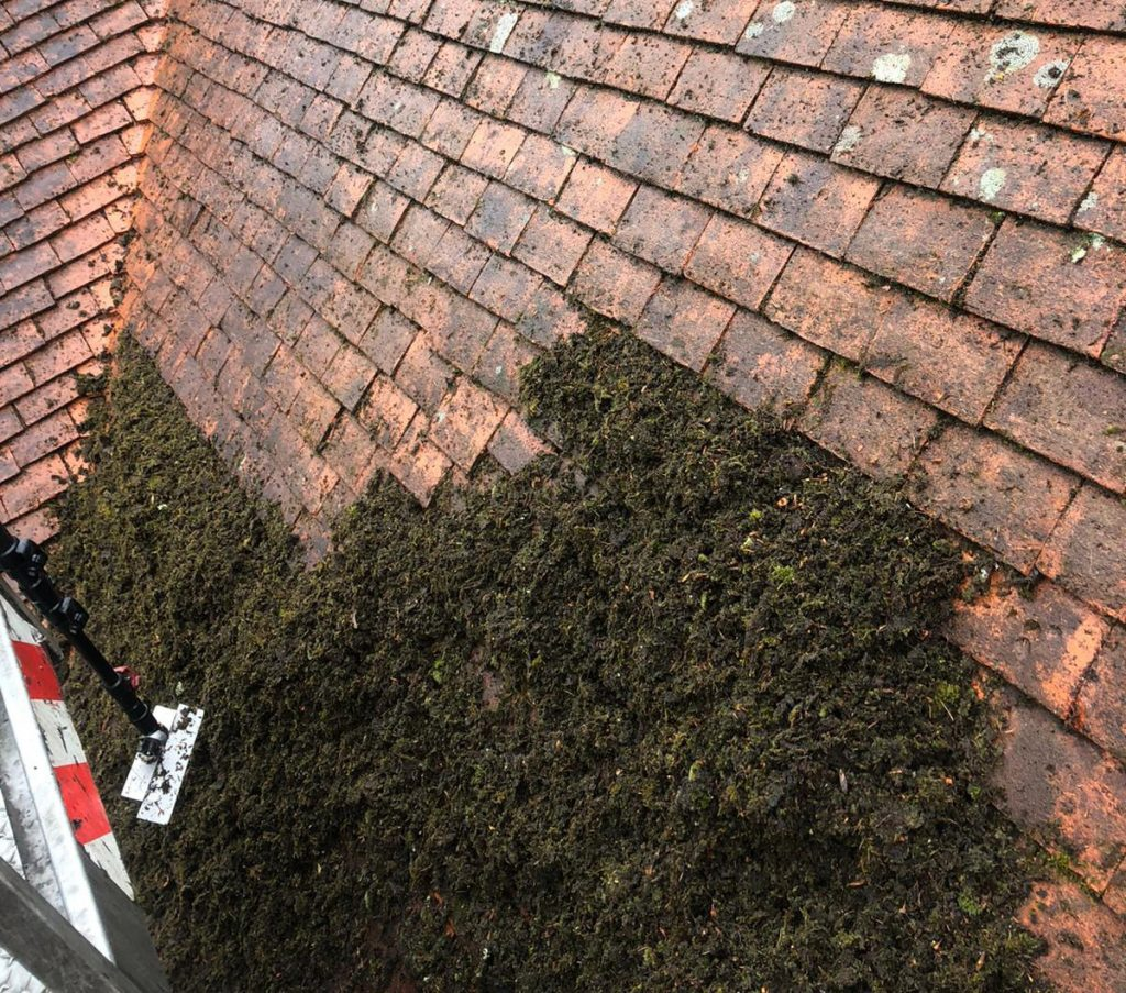 Kent Roof Care - Roof Cleaning Specialists Canterbury